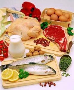 hrana-proteini